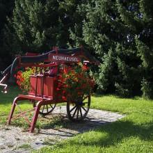 commune-neuhaeusel-29